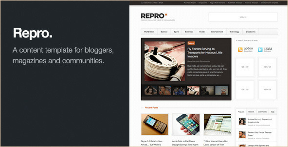 Repro - Premium WordPress News and Magazine Theme