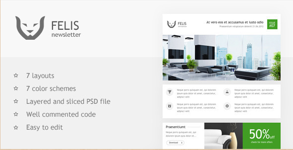 Felis Newsletter Template