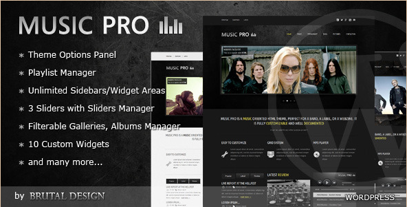 Best wordpress music themes joomla drupal and html for Band epk template