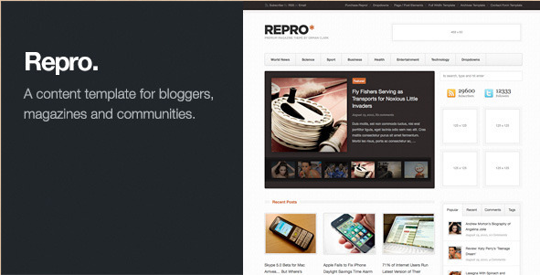 Repro - Premium WordPress News theme