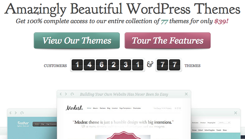 ElegantThemes for WordPress Templates