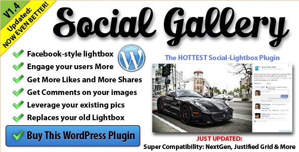 Social Gallery - WordPress Gallery View Plugin