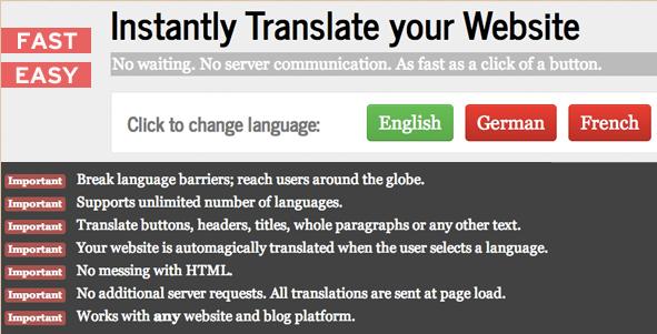 Instant Website and Blog Translator