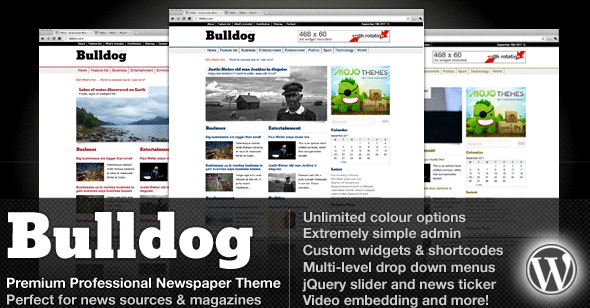 Bulldog Premium Professional Newspaper Theme