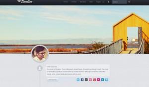 25 impressive Tumblr themes