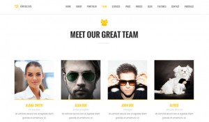 20 stunning fresh retina ready WordPress themes