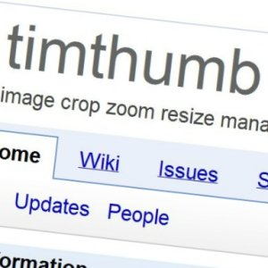 TimThumb Plugin Contains Another Vulnerability, Websites at Risk