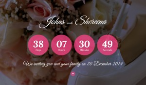20 wedding website templates