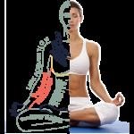 SEO-yoga