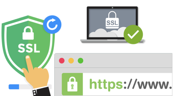 How to Install a Wildcard SSL Certificate on Your WordPress Site